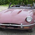 Jaguar-vorher-1