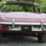 Jaguar-vorher-5